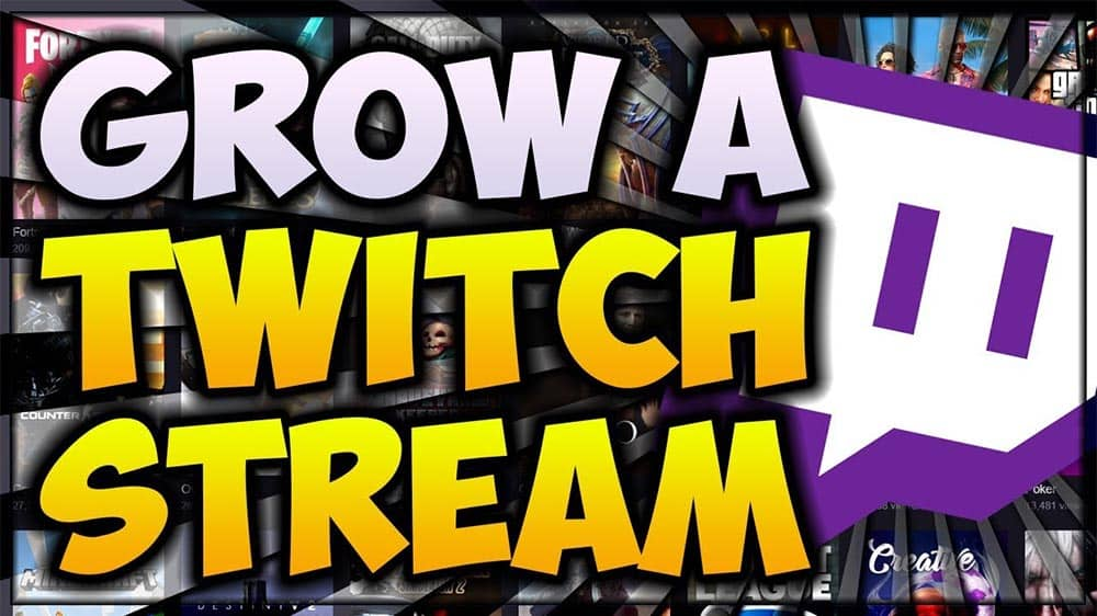 Professional Advice On How To Grow On Twitch Stream